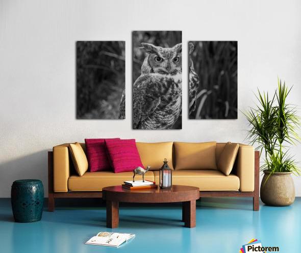 20181021 DSC 0154  2  1 2 Canvas print