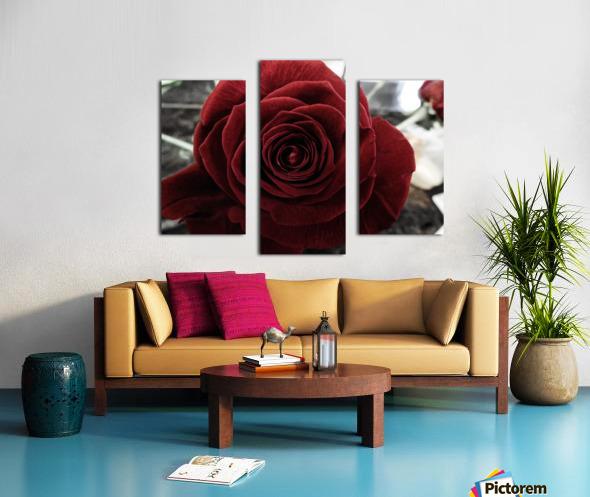 20181209 IMG 2803 Canvas print