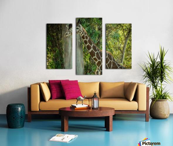 20181104 DSC 0203  3  Canvas print