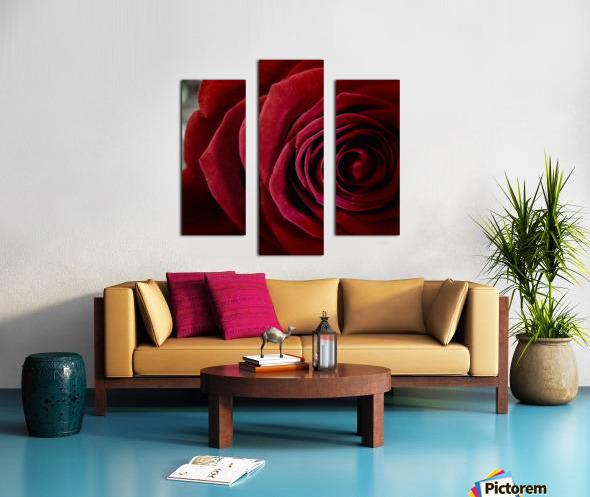 20181209 IMG 2798 1610470253.4238 Canvas print