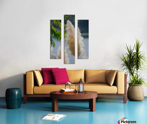 20181104 DSC 0284  3  Canvas print