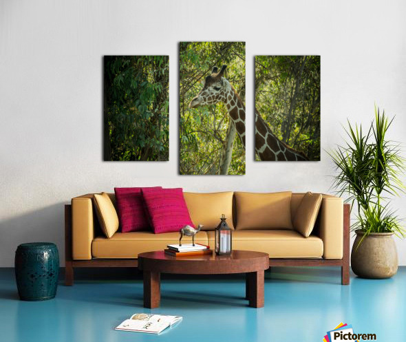 20181104 DSC 0202  3  Canvas print