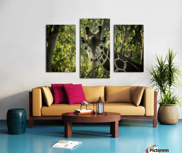 20181104 DSC 0191  3  Canvas print