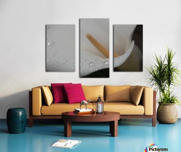 20200314 DSC 0071 Canvas print
