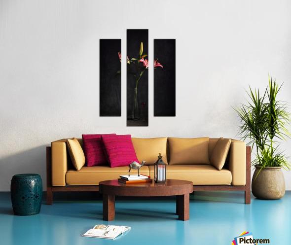 Etude Zen 4f Canvas print