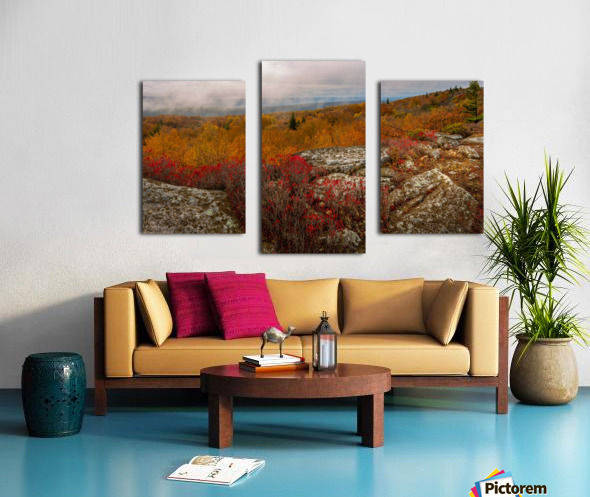 Colors of Nature apmi 1795 Canvas print