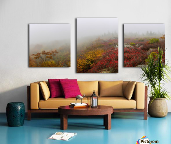 Hurricane Delta apmi 1800 Canvas print