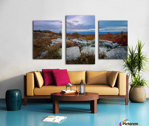 The Colors of Nature apmi 1780 Canvas print