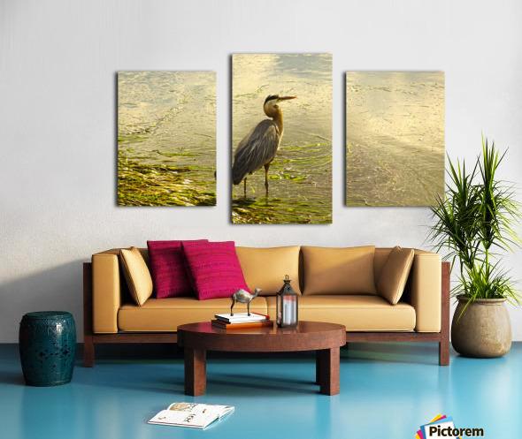 Blue Heron At the Estuary Canvas print