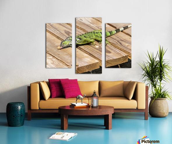 Cayman Green Iguana Snacking Canvas print