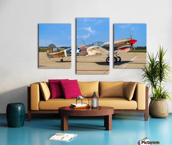 P 40 Warhawk Canvas print