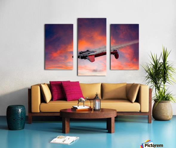 Beech B18 Inverted Flight Canvas print