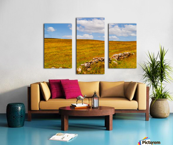 Donegal 24 Canvas print