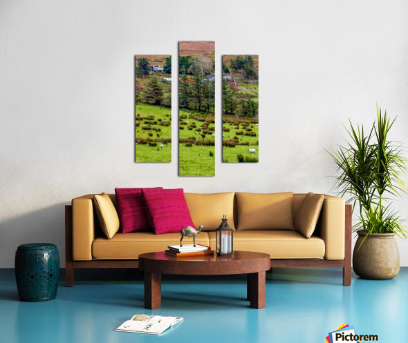 Donegal 7 Canvas print