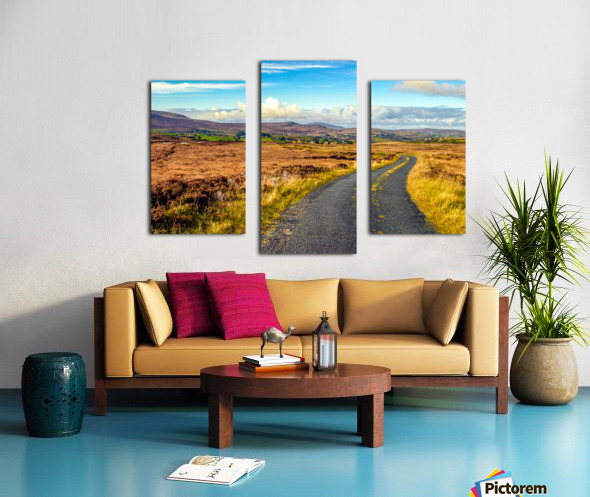 Donegal 11 Canvas print