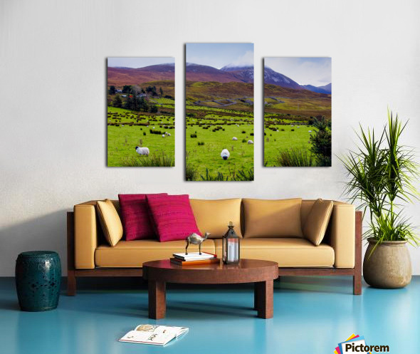 Donegal 10 Canvas print