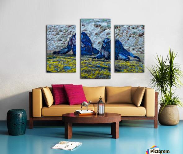 Siamang Canvas print