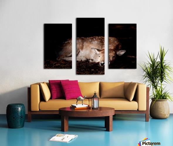 Fallow Deer 2 Canvas print