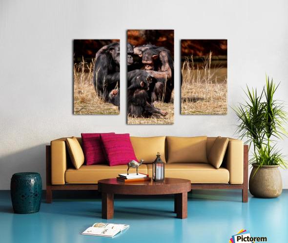 Chimpanzee Family Canvas print