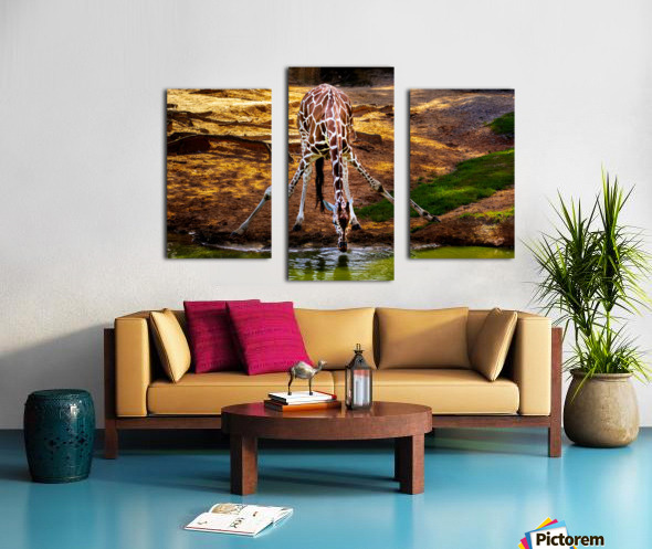 Reticulated Giraffe 2 Canvas print
