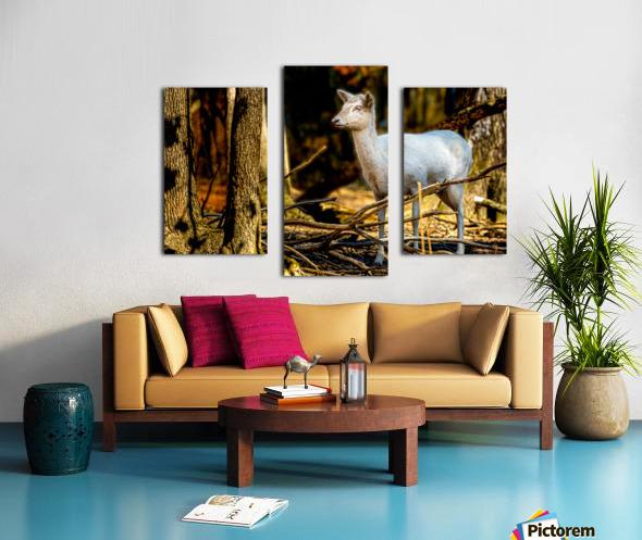 Fallow Deer 3 Canvas print
