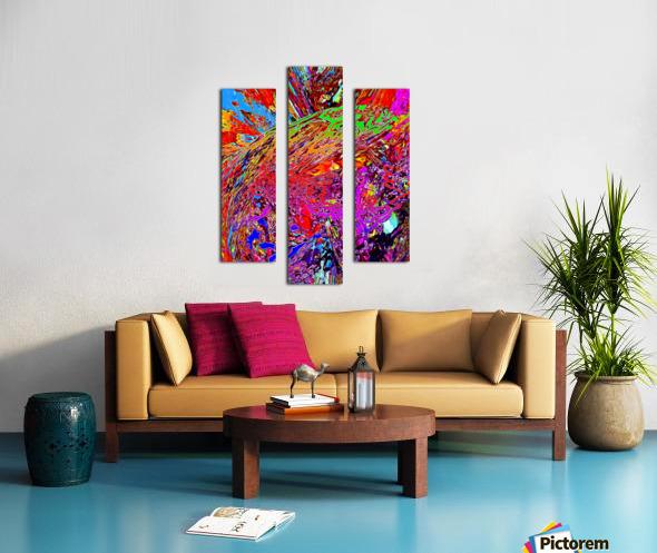 Baudi Canvas print