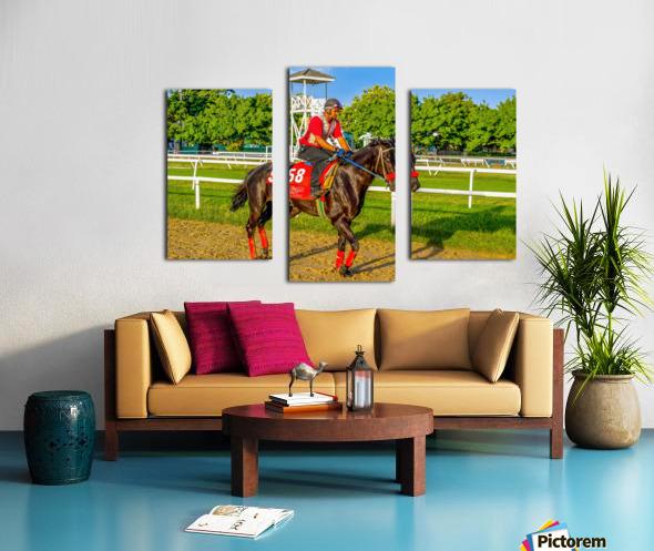 Racehorse01 Canvas print