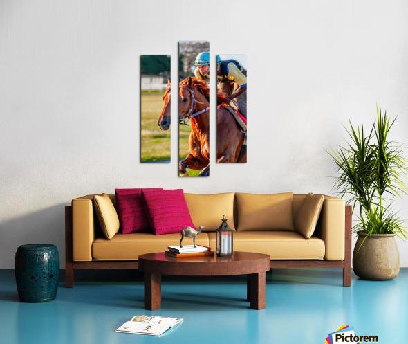 Racehorse11 Canvas print