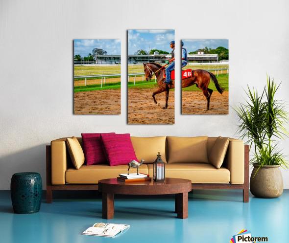 Racehorse04 Canvas print