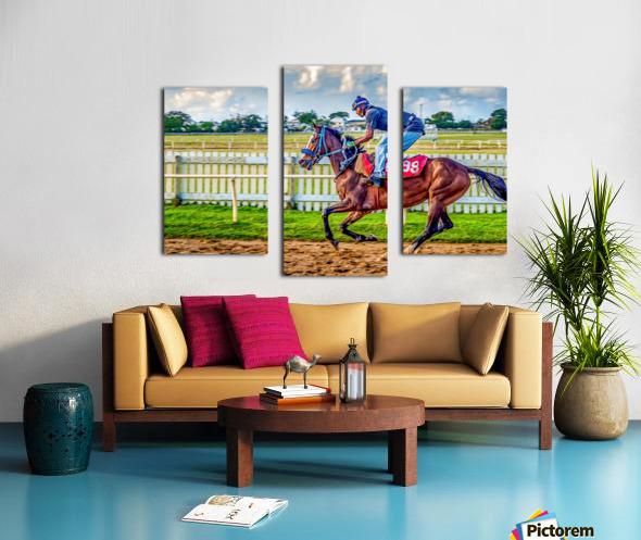 Racehorse09 Canvas print