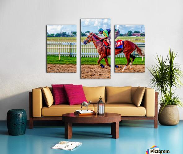 Racehorse10 Canvas print