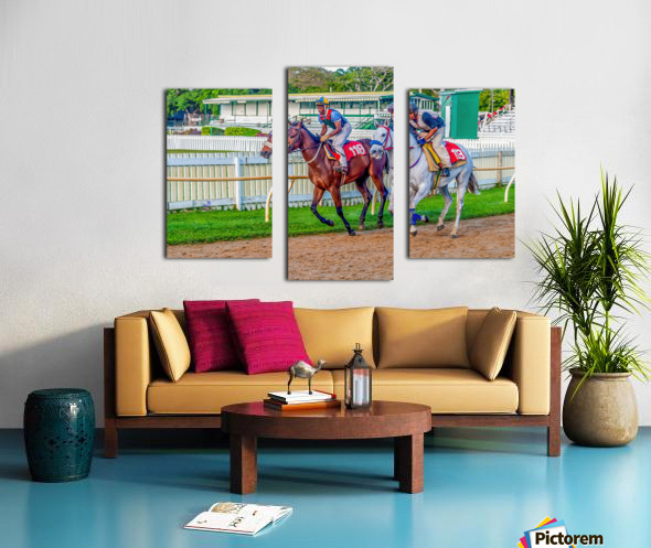 Racehorse07 Canvas print