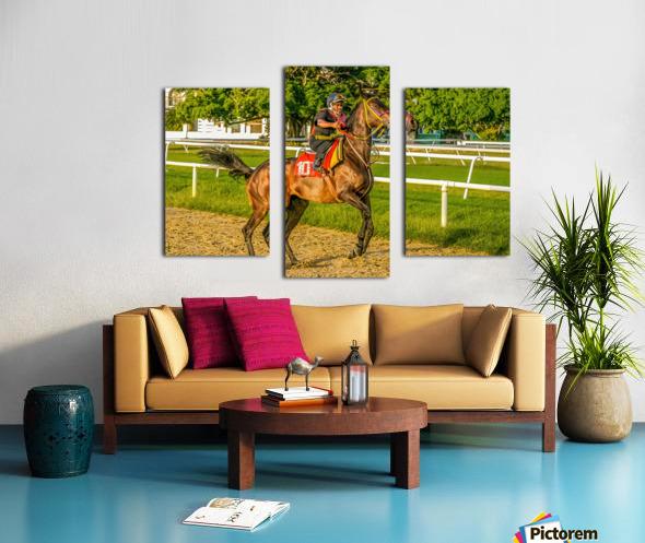 Racehorse12 Canvas print