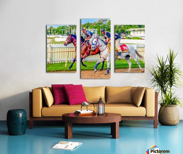 Racehorse08 Canvas print