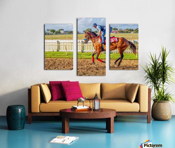 Racehorse06 Canvas print