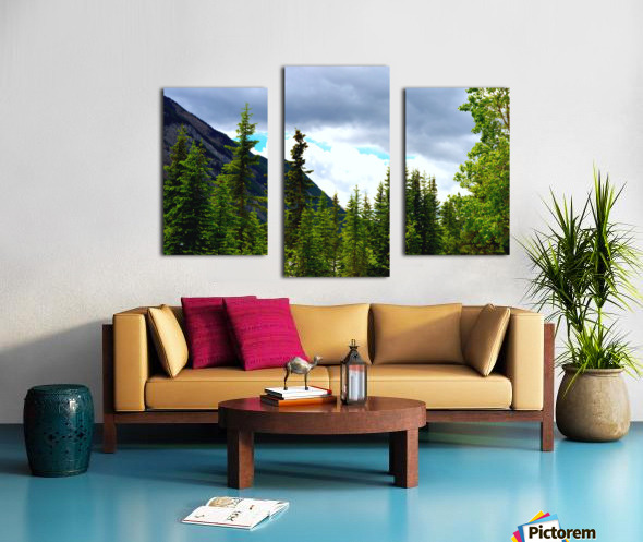 Perspective Approves Canvas print