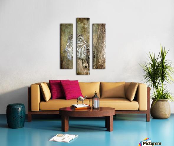 Grungy Owl Canvas print