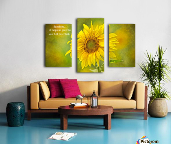 Gratitude is Like Sunshine Canvas print