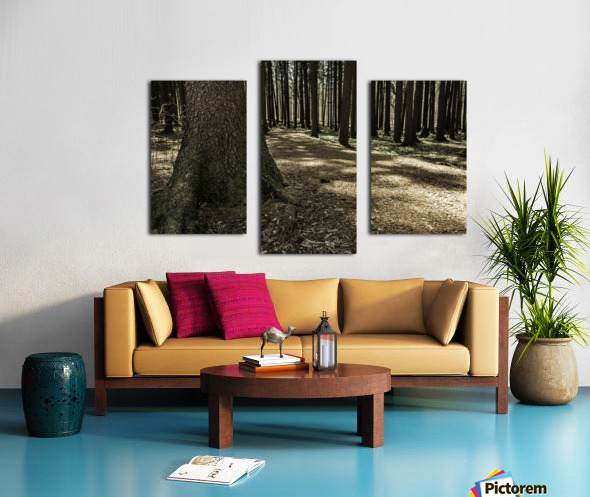 One in a Hundred Canvas print