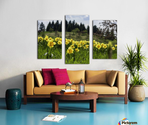 Flowers on the Hills Canvas print