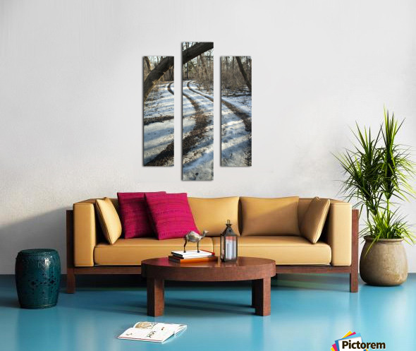 Snowy Trails Canvas print