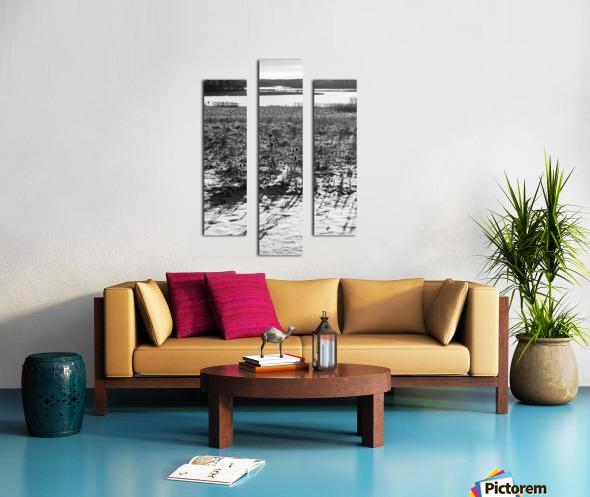 Cattails at Dawn Canvas print