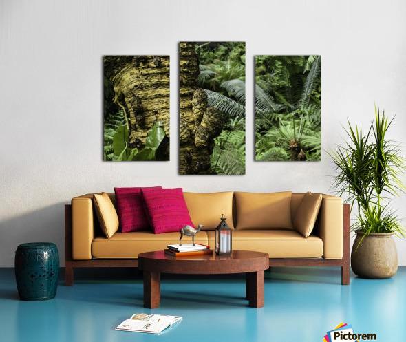 Trees Textures Canvas print