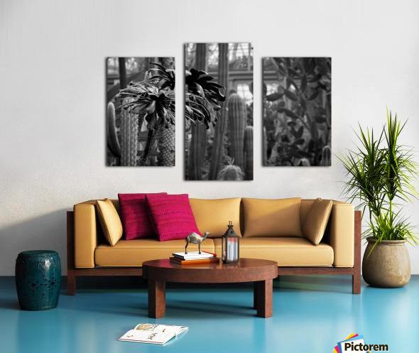 Desert in Black White Canvas print