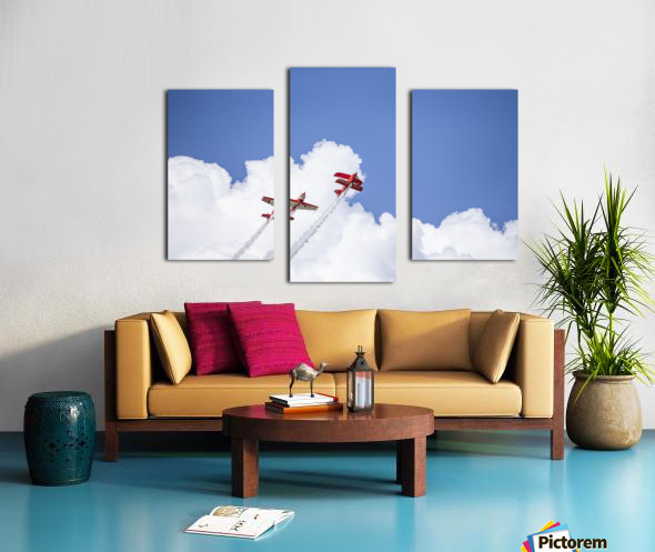 Red Against a Blue Sky Canvas print