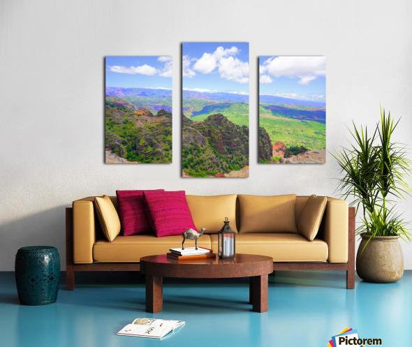 Waimea Canyon Area in the Puu Ka Pele Forest Reserve on the Island of Kauai Hawaii Canvas print