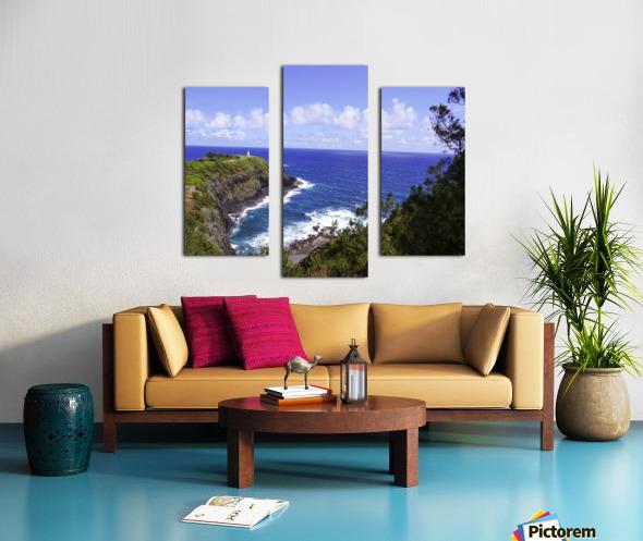 Spring at Kilauea Lighthouse on the Island of Kauai Canvas print