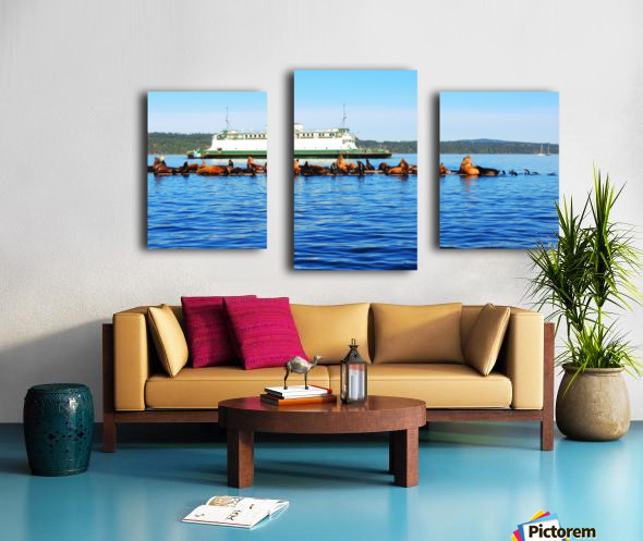 Sea Lions Hanging Out Canvas print
