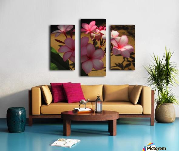 Pink Plumeria 2 Canvas print