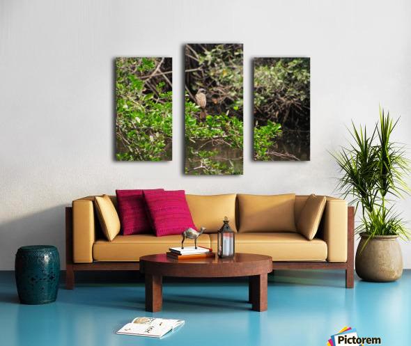 Tropical Bird in Tree Canvas print